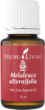 melaleuca-alternifolia-15ml